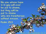 psalm 25 3