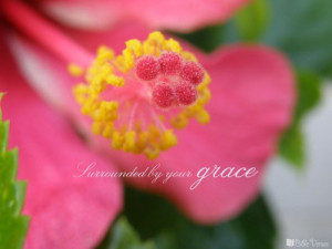 Surrounded By Grace ~ CHRISTian poetry by deborah ann ~ I Bible Verses Photo