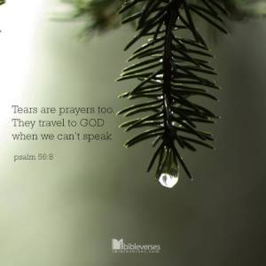 Tear are Prayers Too used with permission IBible Verses