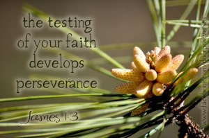 The testing of Your faith used with permission Doorpost Verses