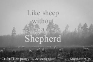 The Harvest is Now ~ CHRISTian poetry by deborah ann